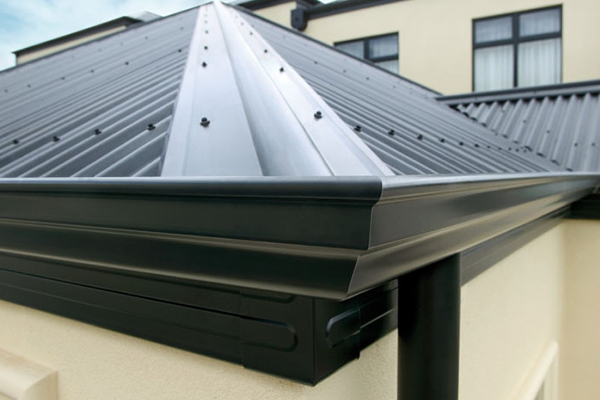 Gutter Mesh and Fascia